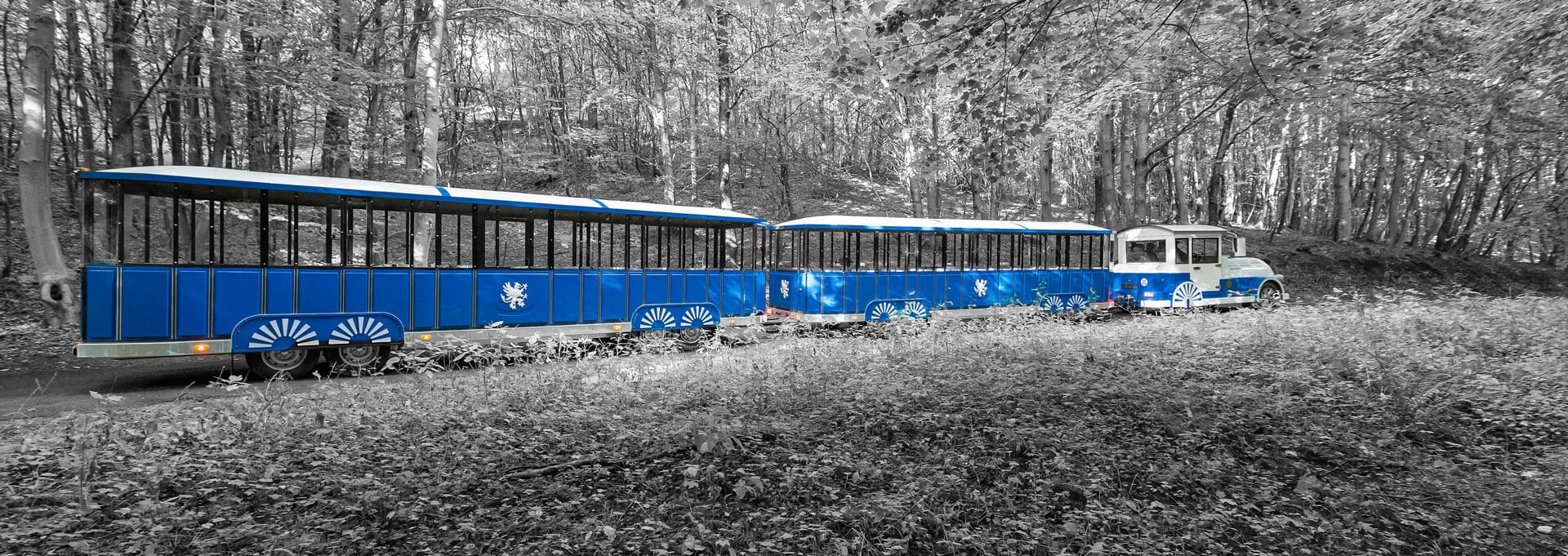 Sightseeing Trains Header Image